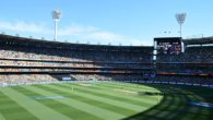 Melbourne Stars vs Melbourne Renegades Scorecard | BBL 8 Live Scores