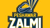 Peshawar Zalmi vs Quetta Gladiators Live Scores   PSL 2019 Live Score   Feb 15